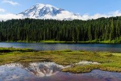 Der Mount Rainier reflektierte sich in einem See lizenzfreies stockfoto