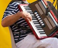 Der Musiker, der das Akkordeon spielt Stockfotos