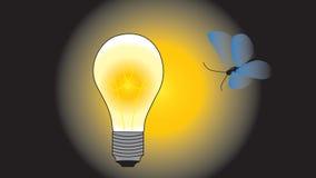 Der Nachtschmetterling fliegt zu einer glühenden elektrischen Birne Stockbilder