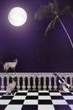 Der Nachtweg Stockbild