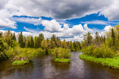 Der Namekagon-Fluss Lizenzfreie Stockbilder