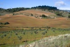 Der natürliche Park Sierra de Las Nieves, Spanien lizenzfreie stockbilder