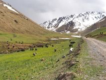 Der Nationalpark Ala Archa in den Tian Shan-Bergen von Bischkek Kirgisistan lizenzfreies stockfoto