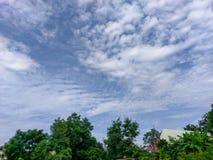 Der Naturlandschaftsszene Prajinburi Thailand blauer Himmel und Stadtstraße zum natürlichen Gefühl frisch und attraktiv in Asien  Stockbild