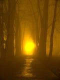 Der Nebel Lizenzfreie Stockbilder