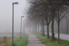 Der Nebel Stockfotografie