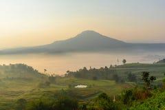 Der Nebel am Berg stockfoto