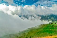 Der Nebel bringt über den Wiesen der Pyrenäen voran lizenzfreies stockfoto