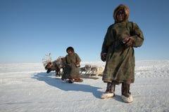 Der Nenets Mann nad sein Sohn nahe deers Stockbilder