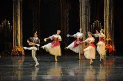 Der nette Gesang- und Tanzen-Dprinz erwachsener Zeremonieballett Swan See Lizenzfreie Stockbilder