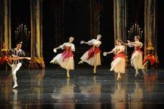 Der nette Gesang- und Tanzen-Dprinz erwachsener Zeremonieballett Swan See Stockbilder