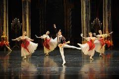Der nette Gesang- und Tanzen-Dprinz erwachsener Zeremonieballett Swan See Stockfoto