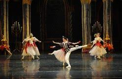 Der nette Gesang- und Tanzen-Dprinz erwachsener Zeremonieballett Swan See Stockbild