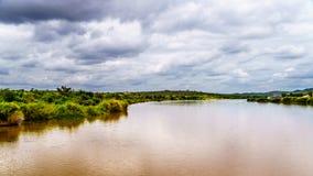 Der Olifants-Fluss nahe Nationalpark Kruger in Südafrika stockfotografie