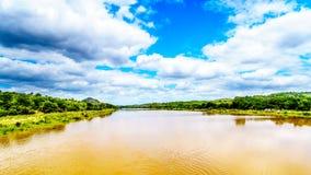 Der Olifants-Fluss nahe Nationalpark Kruger in Südafrika lizenzfreies stockfoto