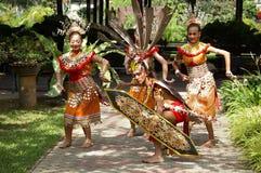 Der Orang Ulu Tanz lizenzfreies stockbild