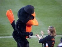 Der oriole-Vogel kennzeichnet einen Baseball für ein Gebläse Lizenzfreies Stockfoto