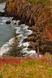 Der Ozean-Klippen-Zeile auf Staat Washington-Küste Stockbild