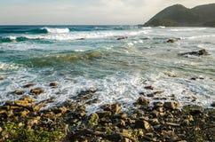 Der Ozean-Wellen Hafen St Johns Berühmter Kanonkop Weinberg nahe malerischen Bergen am Frühling Lizenzfreie Stockfotos