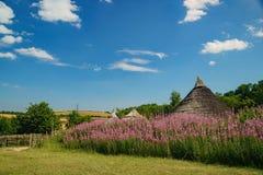 Der pädagogische alte Bauernhof Butser Lizenzfreie Stockfotos
