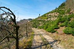 Der Panoramaweg am lautenbach in Deutschland lizenzfreie stockfotografie