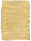 Der Papyrus Lizenzfreies Stockbild