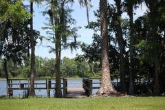 Der Park Stockbild