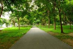 Der Park Lizenzfreies Stockbild