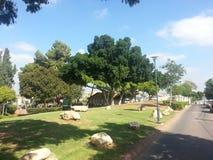 Der Park in Ra ` anana, Israel stockbild
