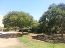 Der Park in Ra ` anana, Israel lizenzfreies stockfoto