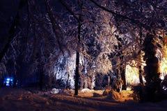 Der Park wird mit Schnee bedeckt Lizenzfreie Stockfotos