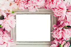 Der Pastellholzrahmen, der mit Pfingstrosen verziert wird, blüht, Raum für Text Spott oben Stockfoto