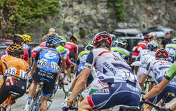 Der Peloton auf Alpe d'Huez Stockbilder