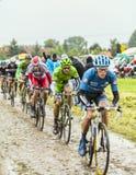 Der Peloton auf einem Cobbled Straßen-Tour de France 2014 Stockbild