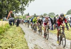 Der Peloton auf einem Cobbled Straßen-Tour de France 2014 Lizenzfreie Stockfotos