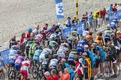 Der Peloton auf Mont Ventoux Stockbilder