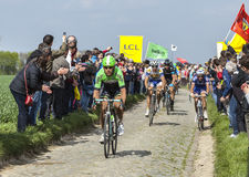Der Peloton Paris Roubaix 2014 Lizenzfreie Stockbilder