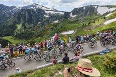 Der Peloton in Pyrenäen Lizenzfreie Stockfotografie