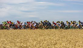 Der Peloton - Tour de France 2017 lizenzfreie stockfotografie