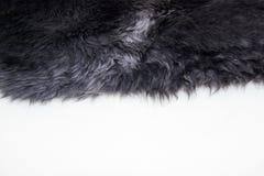 der Pelz des Schaffells auf weißem Hintergrund Lizenzfreie Stockbilder