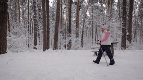 Der Pensionär im Holz geht auf einen Fußweg entlang Bäumen Die ältere Frau geht skandinavischer Schritt schneller Das suppor stock video footage