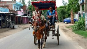 Der Pferdewarenkorb und das nette Fahrzeug lizenzfreie stockfotografie