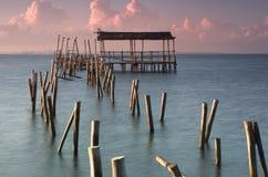 Der Pier von Seemöwen Lizenzfreie Stockfotos
