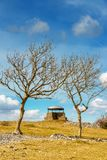 Der Pilz auf Pfadfindernarbe, Kendal, gestaltet durch zwei Eschen stockfotos