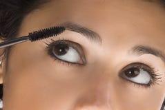 Der Pinsel und die Augen stockfoto