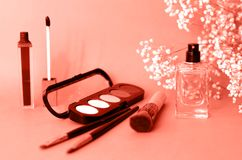 Der Plan mit Kosmetik- und Frauenparfümkorallenfarbe lizenzfreies stockfoto