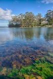 Der Port Arthur-Meerespflanzensee stockbild
