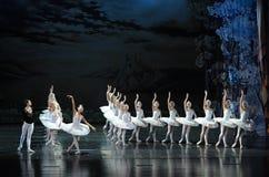Der Prinz verliebte sich in den Schwan der schönste Einballett Swan See Stockfotografie