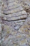 Der purpurrote Felsen stockbild
