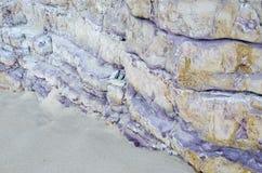 Der purpurrote Felsen auf dem Strand lizenzfreies stockbild